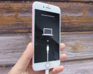 Put your disabled iPhone or iPad into Recovery Mode
