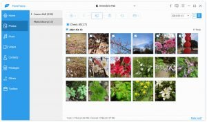 photos successfully transferred from PC to iPad