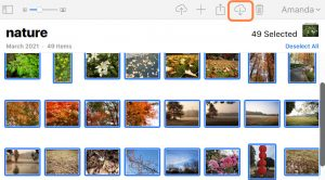 download several photos from iCloud