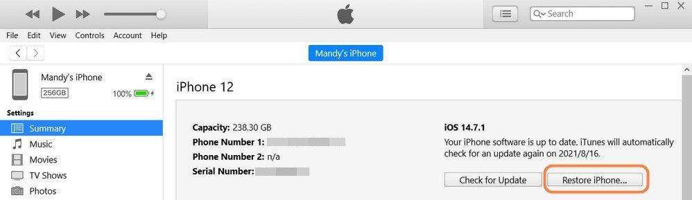 restore iPhone in iTunes